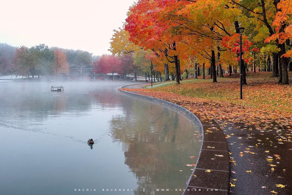 Lac des castors à Montréal par le photographe Rachik BOUANANI sur www.rachikb.com